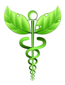 holistic medicine denver colorado