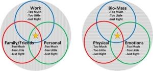 Holistic Medicine - Balance Produces Health and Healing